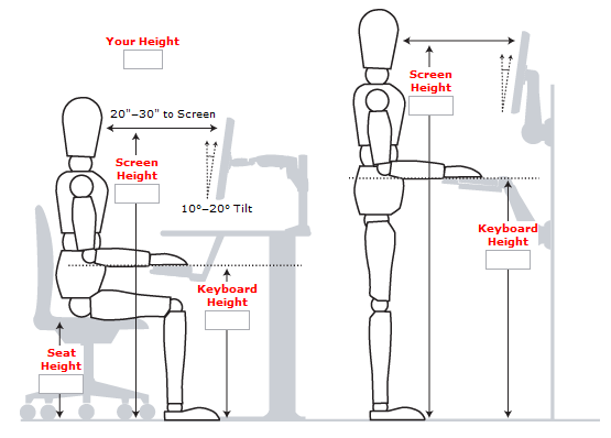 Standing-Desk-Measurements, health
