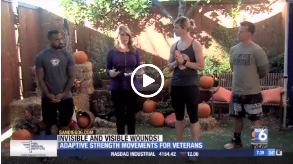 invisible wounds, Working with Veterans with Invisible and Visible Wounds